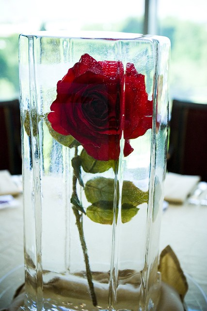 Our frozen floral centerpieces flickr photo sharing