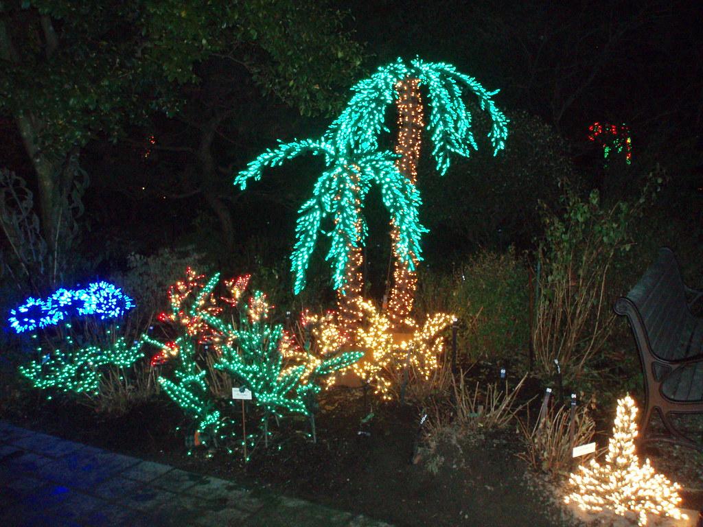 Christmas Lights Bellevue