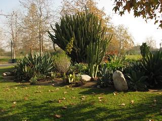 Augustus Hawkins Natural Park