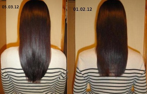 Репейное масло для роста волос отзывы фото