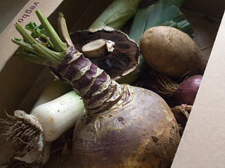 Mini vegbox (Nene River Farms) | by Unhindered by Talent