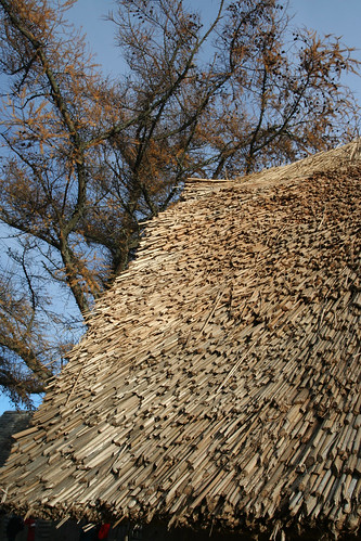 Thatch Roof | by Clearly Ambiguous