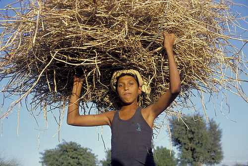 Young boy carrying bundle | by World Bank Photo Collection