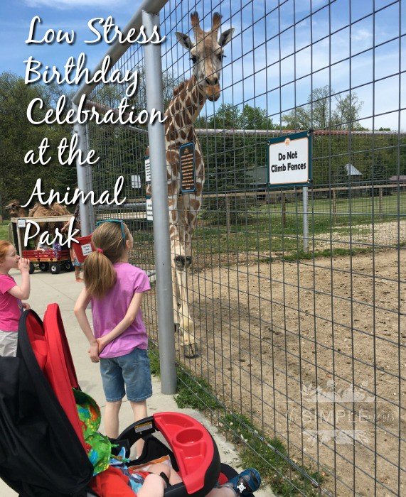 low stress zoo birthday celebration