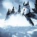 Selenium Snowboard-19.jpg