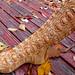 acornSock826_72dpi