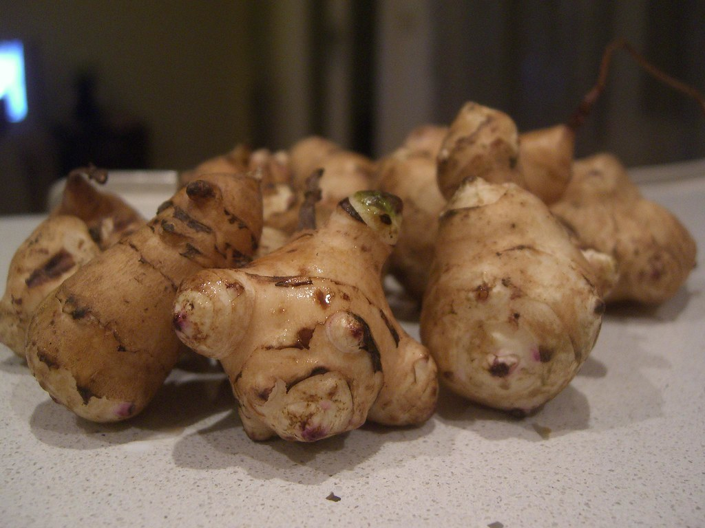 Jerusalem Artichokes from Kenny\'s garden | Not sure what to … | Flickr