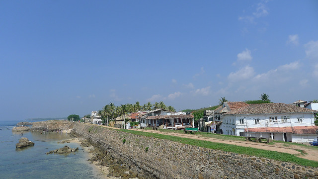 297-Galle