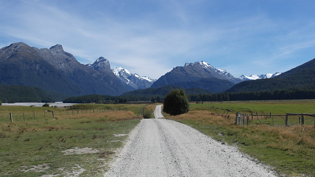Paradise Road #autonauti #NZL