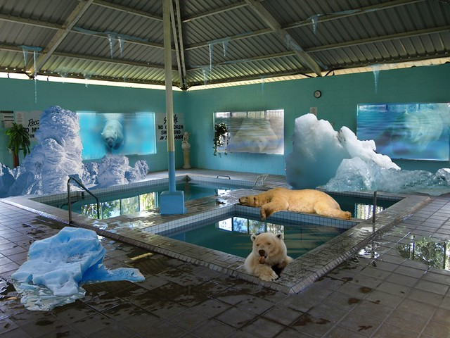 Polar bear club | My entry into the WPC #83, Original spa ...