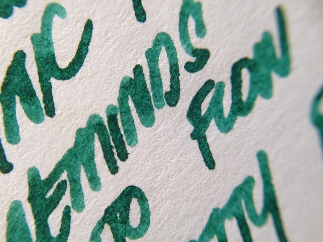 Birmingham Inks - Schenley Park - Thicket Green