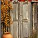 Doors of Santa Fe