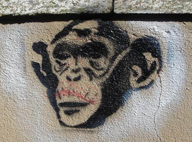 Monkey Stencil Monkey Stencil | by