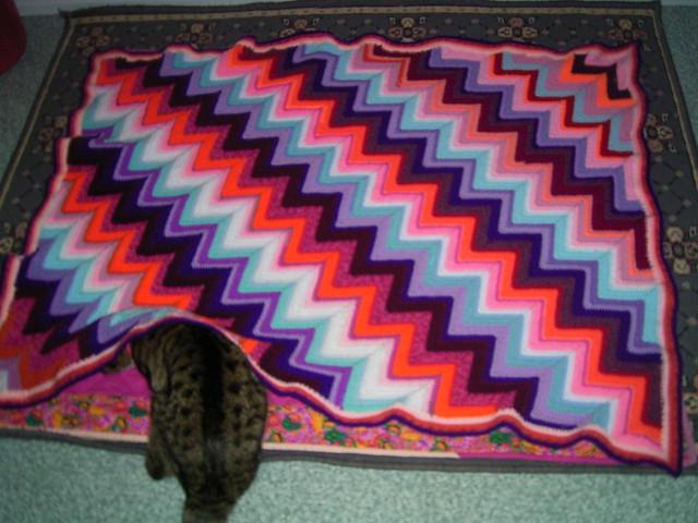 Diagonal Ripple Crochet Afghan Crochet Afghan All Acryli Flickr