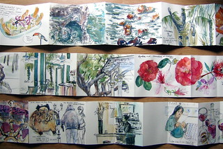 My three accordion travel sketchbooks | by Laura Frankstone