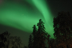 012908_northernLights_0025 | by te2_motion_logic