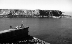 Eymouth Harbour Entrance | by Agfapan-25