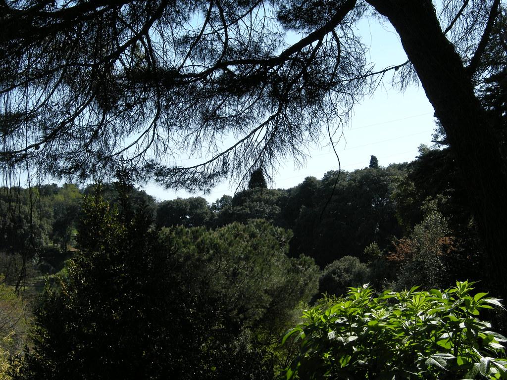 Villa Duchessa Di Galliera Matrimonio