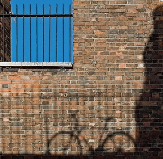 Shadows | by Dave Gorman