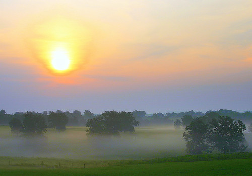 Sun and Mist.. | by ~M~Chelle & her view***
