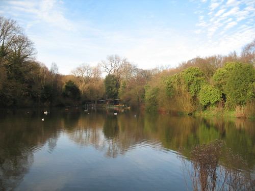Mixed Pool Hampstead Heath I Took This Shot Today 22 Janua Flickr
