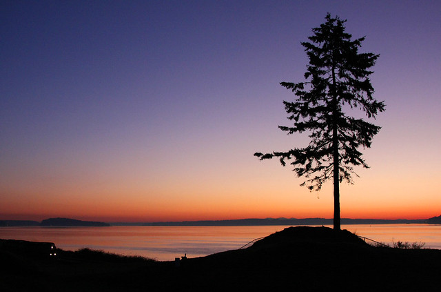 Lone Tree Chambers Bay Golf Course