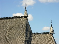 Roof tiles 1 | by florinf
