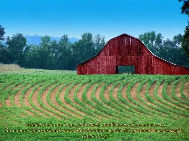 Luke 1215 Barn And Field Gimped