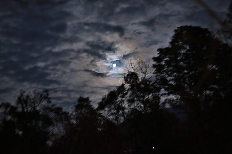 今晚的月光