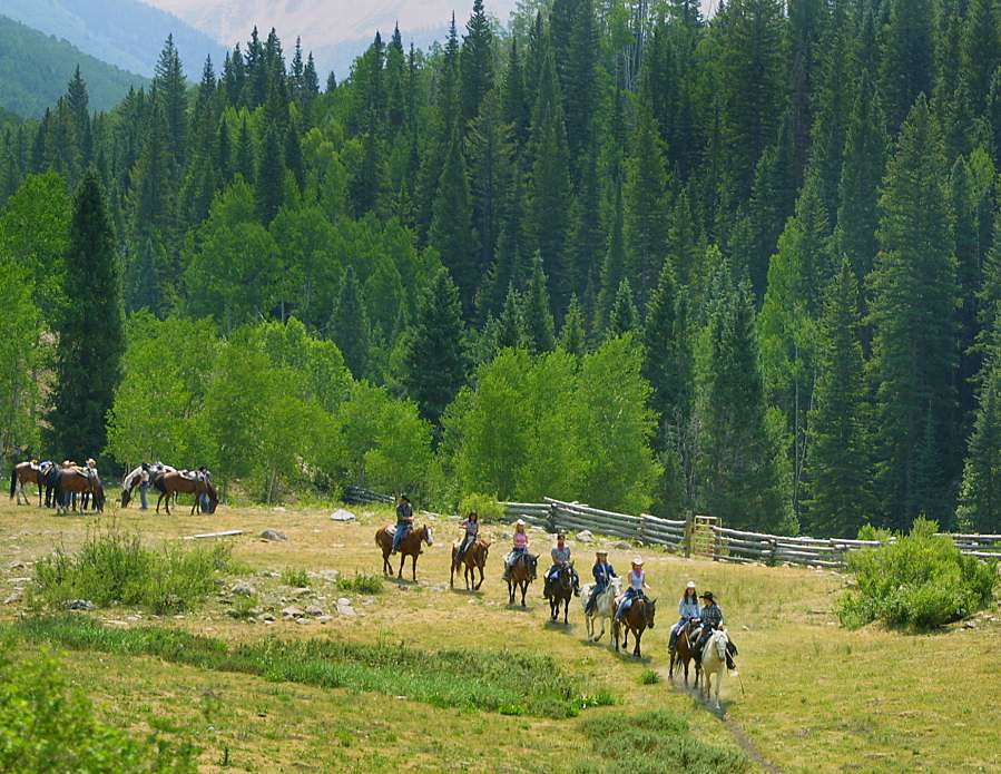 Horseback Riding At The Majestic Dude Ranch The Trail