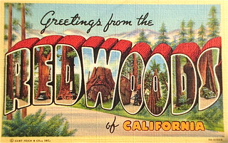 Greetings from the Redwoods of California postcard. | by Smaddy