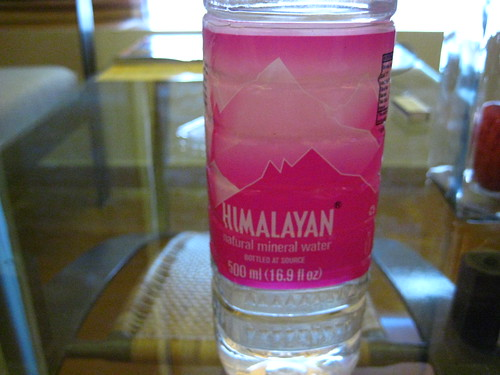 I drank a lot of Himalayan water while I was there | by douglemoine