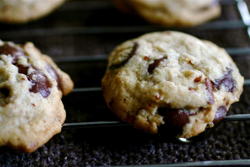 Chocolate chip macro deb flickr for Smitten kitchen chocolate chip cookies