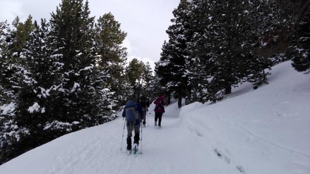 2017-02-12 Ruta pel Pla de Beret a Montgarri amb raquetes de neu