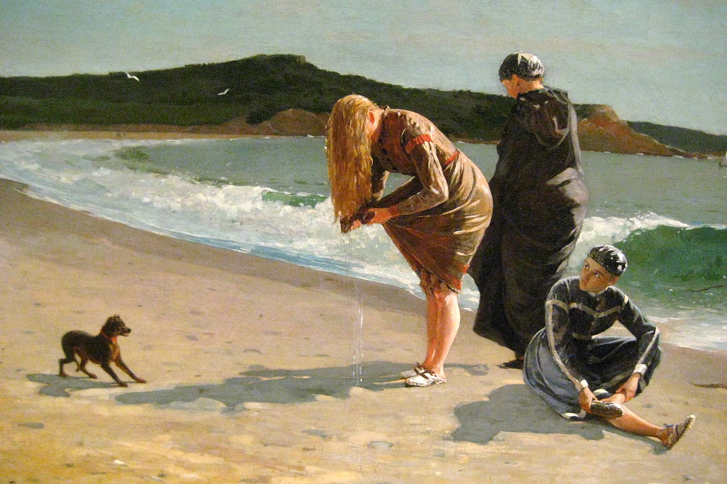 Dog Beach America