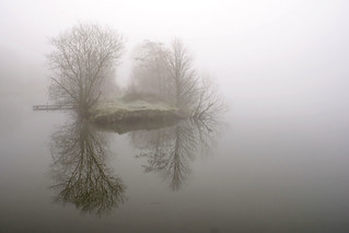 Day 61 Foggy Morning at Treeton Dyke | by geo3pea