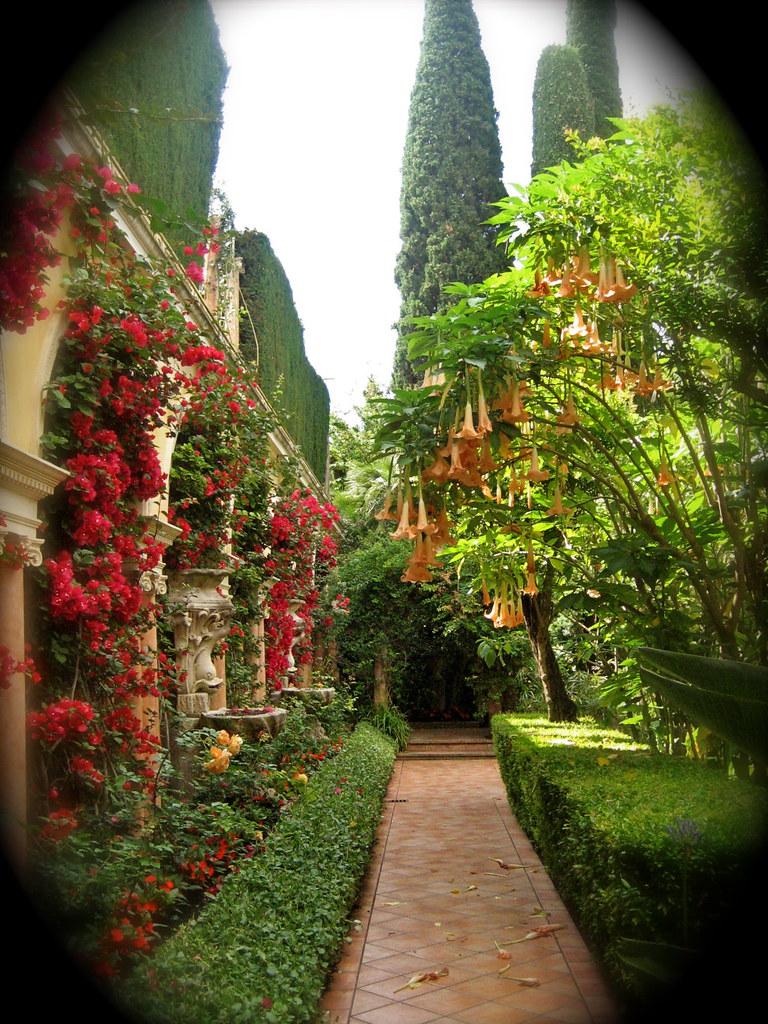 Villa Et Jardins Ephrussi de Rothschild   Brugmansia & Bouga…   Flickr