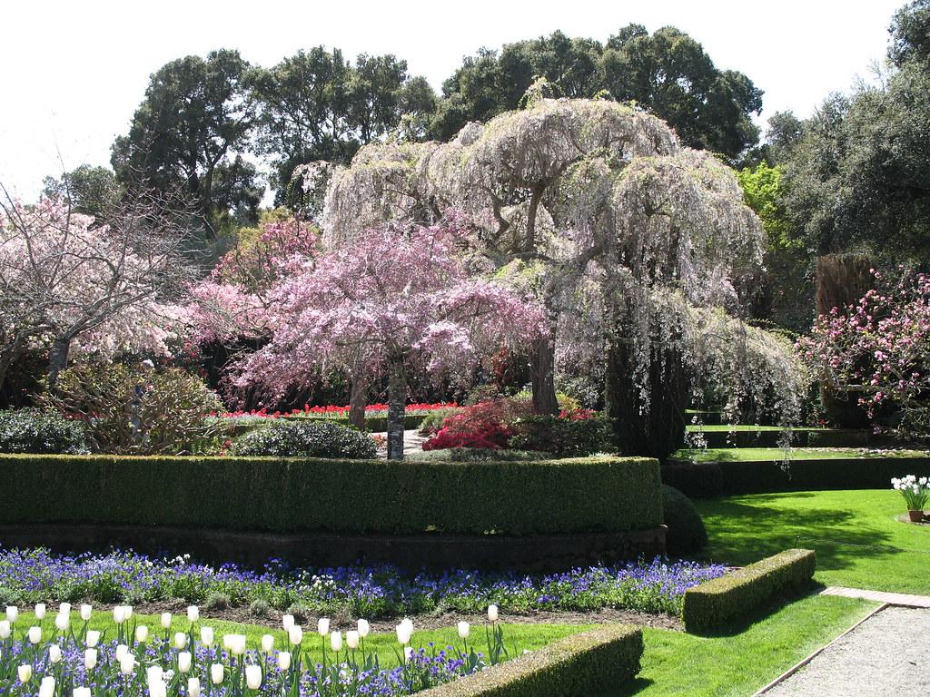 Filoli Garden Woodside California Bunny8907 Flickr