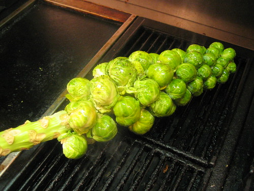 brussel sprouts on the grill | by tofu666