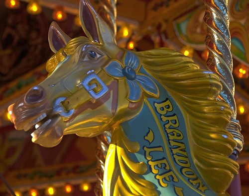 Carousel Horse | by Rob A Dickinson