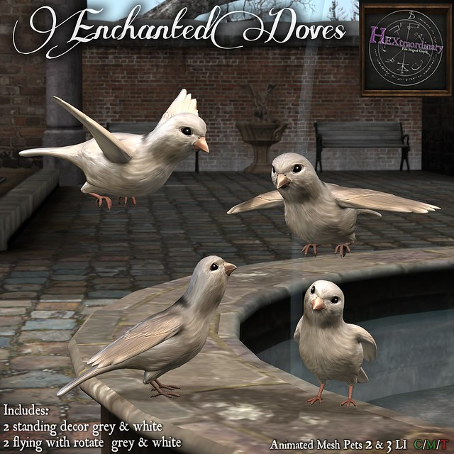 Enchanted Doves