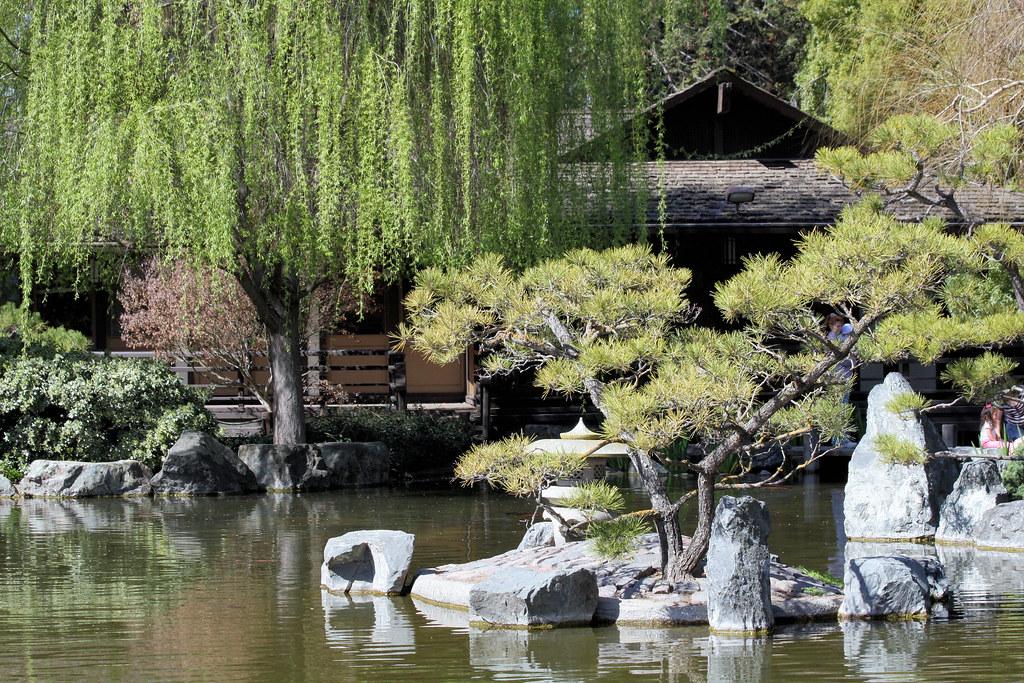 Japanese friendship garden photo by chuck rogers the for Japanese friendship garden san jose koi fish