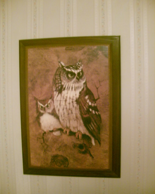 Useful idea vintage owl art