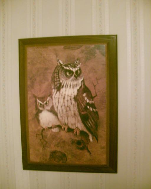 Useful idea vintage owl art