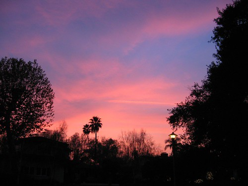 Pink Sky Three | by WilWheaton