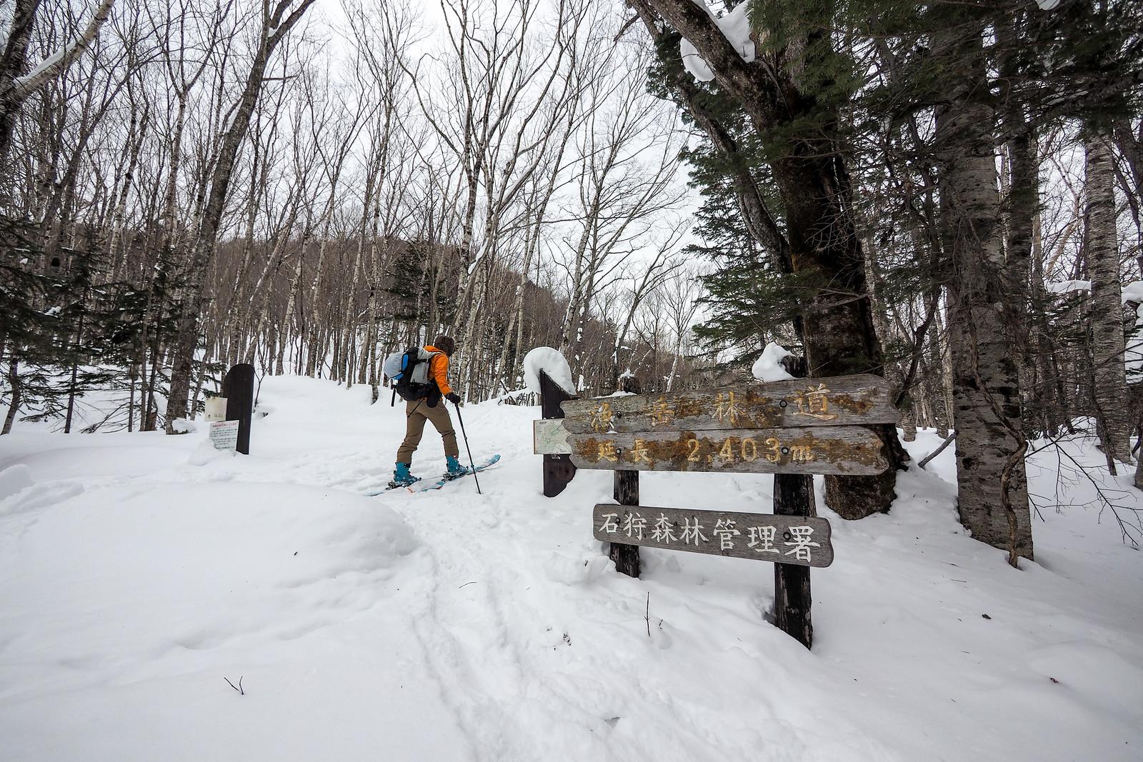 Mt. Okotanpe ski touring (Hokkaido, Japan)
