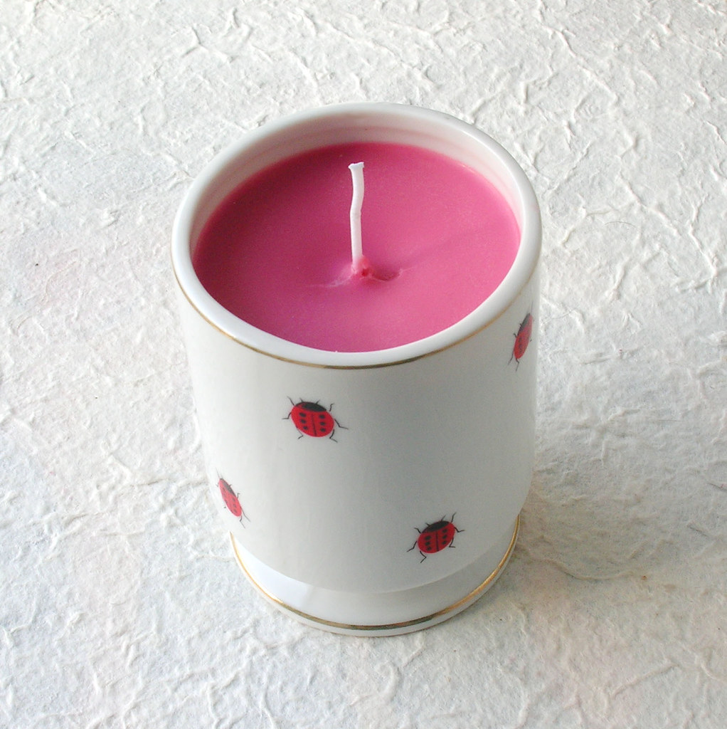 Hot Baked Apple Pie Ladybug Soy Teacup Candle