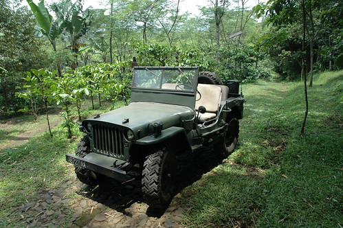 Willys Jeep | by Alpinaboy
