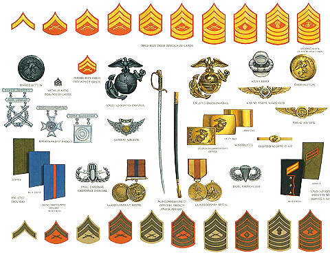 USMC STUFF | Rank, badges,chevrons, for usmc | HOMER ...