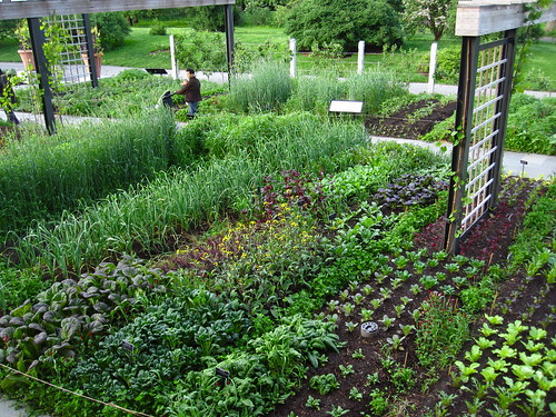 The Herb Garden | by Brooklyn Botanic Garden